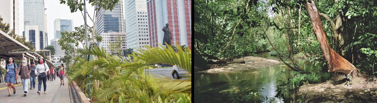 Menschen gehen über eine Straße in Jakarta und eine Naturlandschaft mit Fluss auf Borneo.