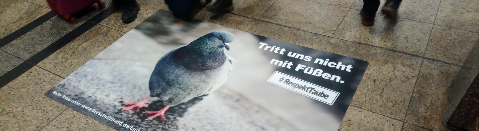 Taubenposter auf dem Boden eines Hauptbahnhofes.