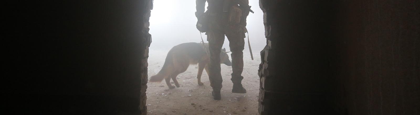 Ein russischer Soldat mit einem Wardog