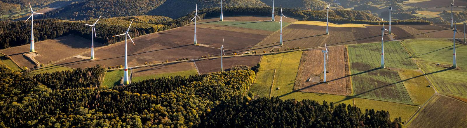 Ein Windpark auf  Feldern