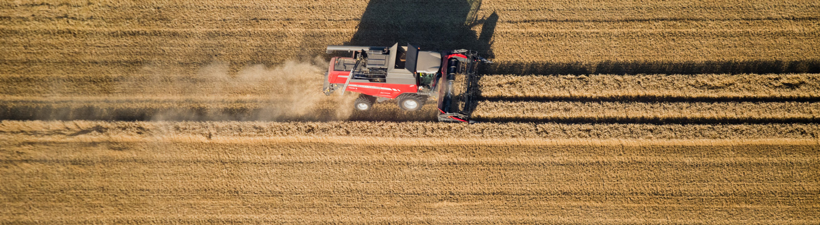 Ein Traktor mäht ein Feld.