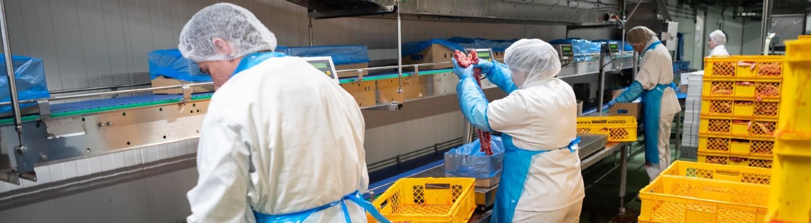 Arbeiter stehen am Fließband einer Fleischverarbeitungsfirma.