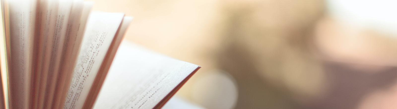 Nahaufnahme eines aufgeblätterten Buches