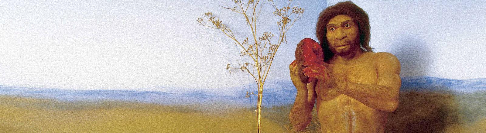 Darstellung einer Szene des Homo antecessor als Gemälde, vermutlich um 1900. Das Bild ist ausgestellt im Museo de Burgos, Castilla-Leon.