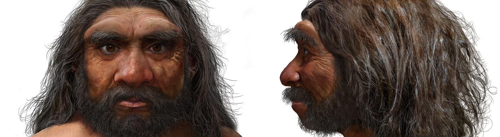 Eine Rekonstruktion des Homo longi.