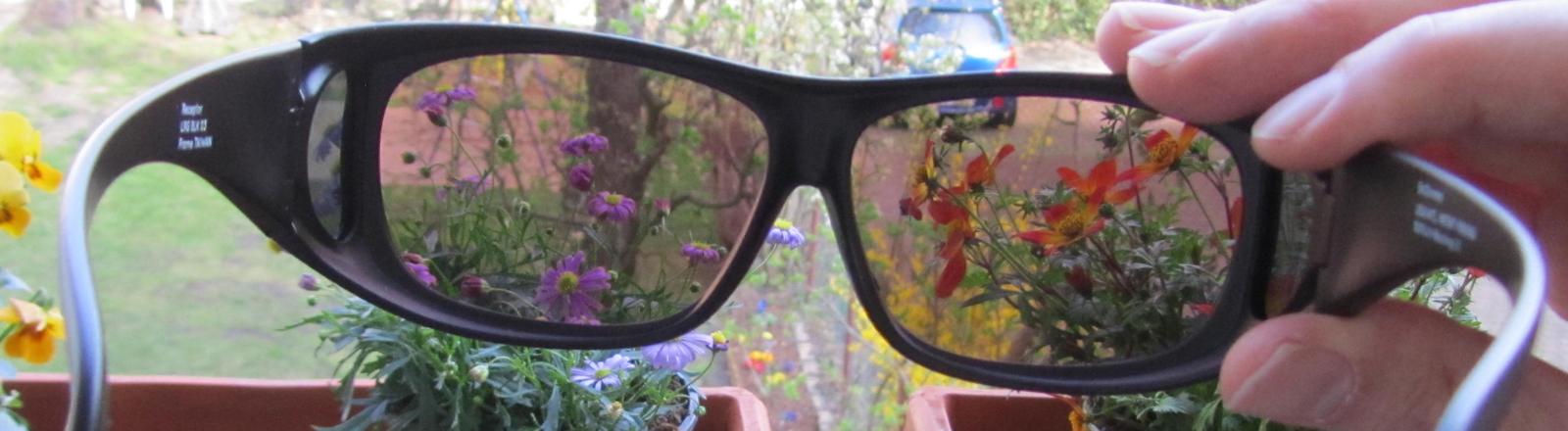 Online-Einzelhändler Verkauf Einzelhändler preiswert kaufen Rot-Grün-Schwäche: Eine Brille macht die Welt bunter · Dlf Nova