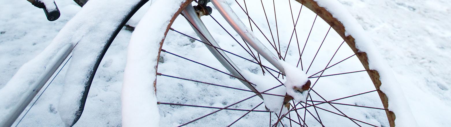 Schneeüberzogene Fahrräder stehen am Dienstag (14.12.2010) an einer Straße in Osnabrück. Die starken Schneefälle haben den Verkehr in Niedersachsen in der Nacht zum Dienstag fast zum Erliegen gebracht. Laut dem Deutschen Wetterdienst (DWD) zieht das Schneetief über Niedersachsen langsam ab - trotzdem bleibt es kalt, es schneit und durch die überfrierende Nässe kann es glatt werden. «So bleibt es auch in den kommenden Tagen winterlich», teilte der DWD für den Norden mit. Teilweise sinken die Temperaturen auf minus 12 Grad. Foto: Friso Gentsch dpa/lni
