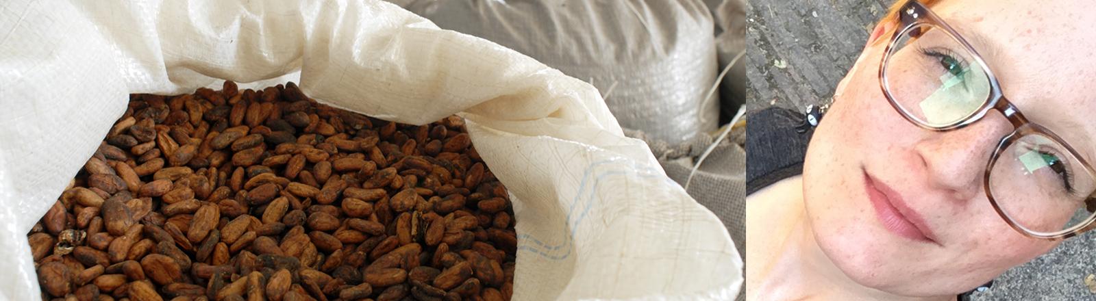 Säcke mit Kakaobohnen in Ilheus in der Provinz Bahia in Brasilien und Lydia Herms