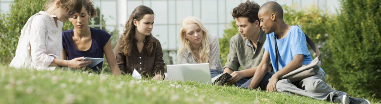 Mehrere Studenten sitzen auf einer Wiese und lernen.