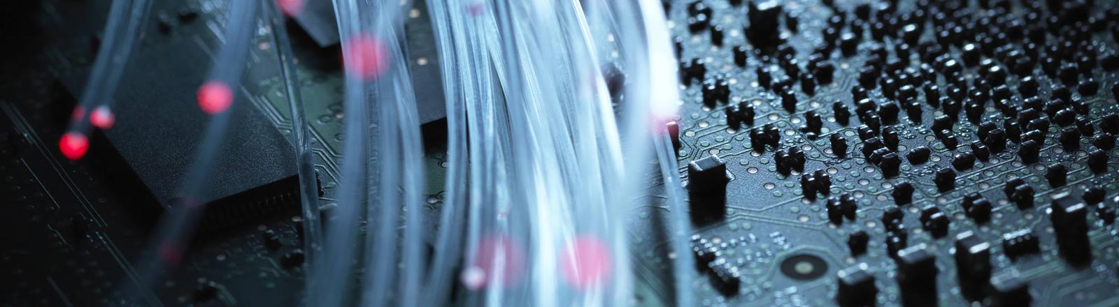 Breitbandkabel in Nahaufnahme