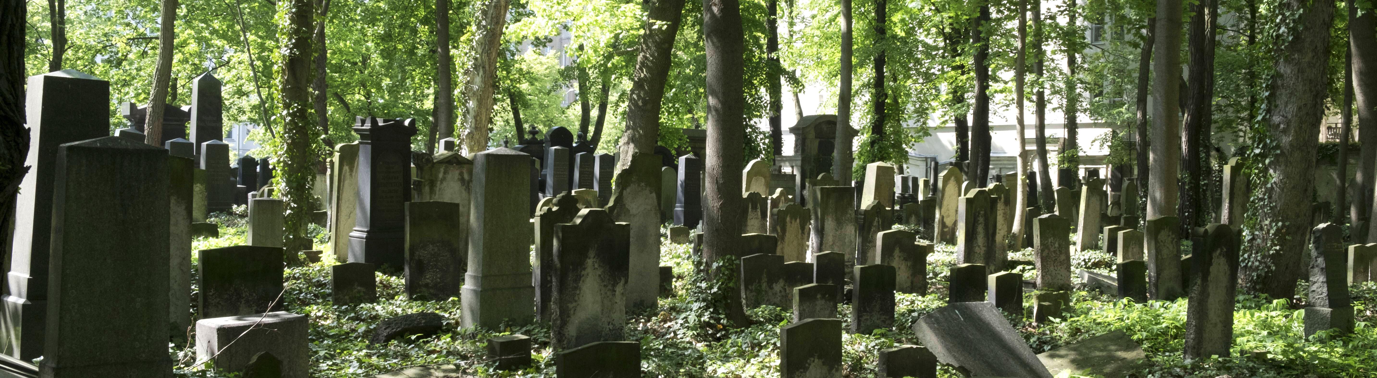 Friedhof mit verfallenen, verwilderten Gräbern