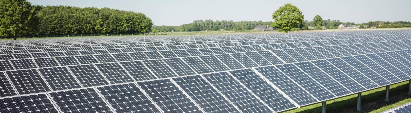 Solaranlage auf Wiese