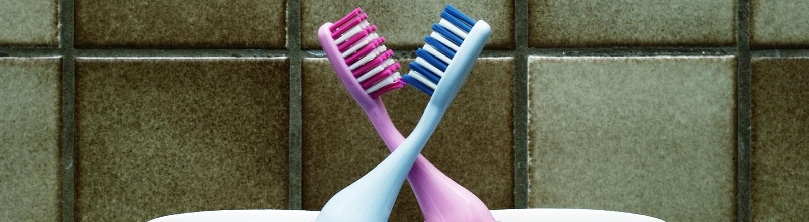 Zwei Zahnbürsten in einem Becher