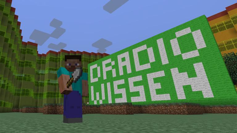 Das Schöne an Minecraft ist: Man kann so ziemlich alles bauen, was man sich vorstellen kann.