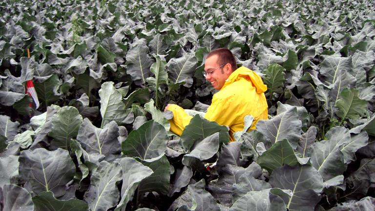 Karsten Zutz ist Wissenschaftlicher Mitarbeiter an der Leibniz Universität Hannover. Er forscht zu Gemüseanbau, unter anderem zum Brokkoli.