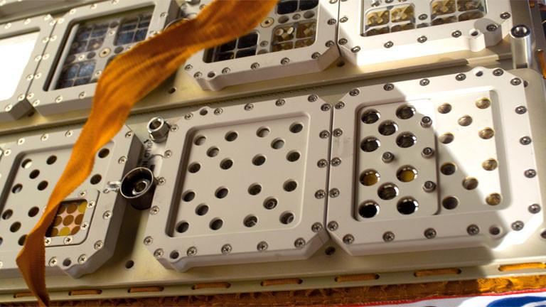 Die Vorrichtung an der Außensseite der ISS in dem Kissenmoose aufbewahrt werden.