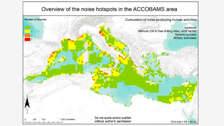 Lärmhotspots im Mittelmeer: Schraffierte Bereiche sind Lebensräume der Wale.