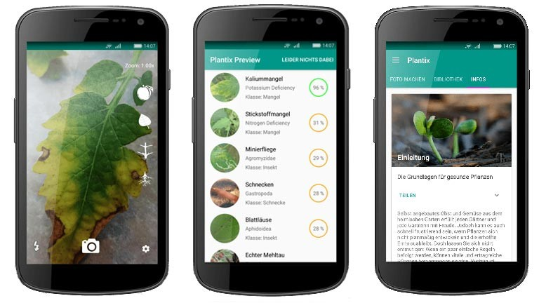 Die App Plantix hilft Krankheiten bei Pflanzen zu erkennen.