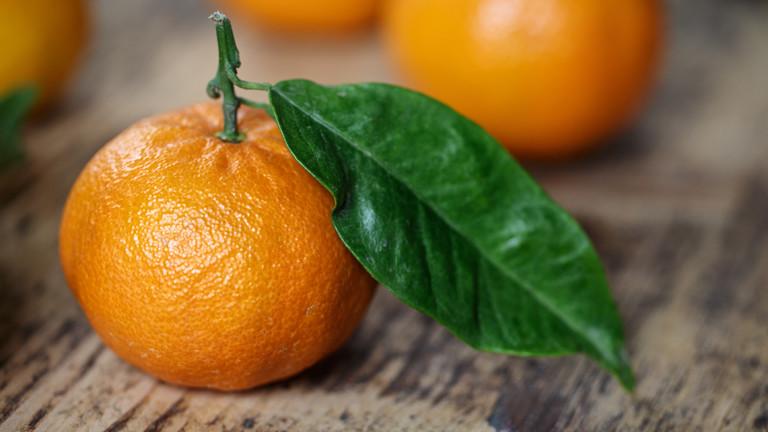 zitrusfr chte wann sind mandarinen und clementinen lecker. Black Bedroom Furniture Sets. Home Design Ideas