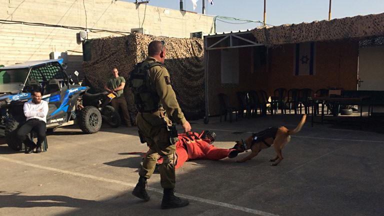 Ein Mann in einem Schutzanzug wird auf dem Boden liegend von einem Hund angegriffen. Ein Mann in Uniform schaut zu.