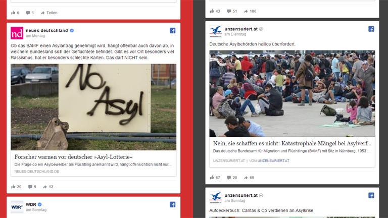 """Screenshot der Seite Farblosbunt zum Suchbegriff """"Asyl""""."""