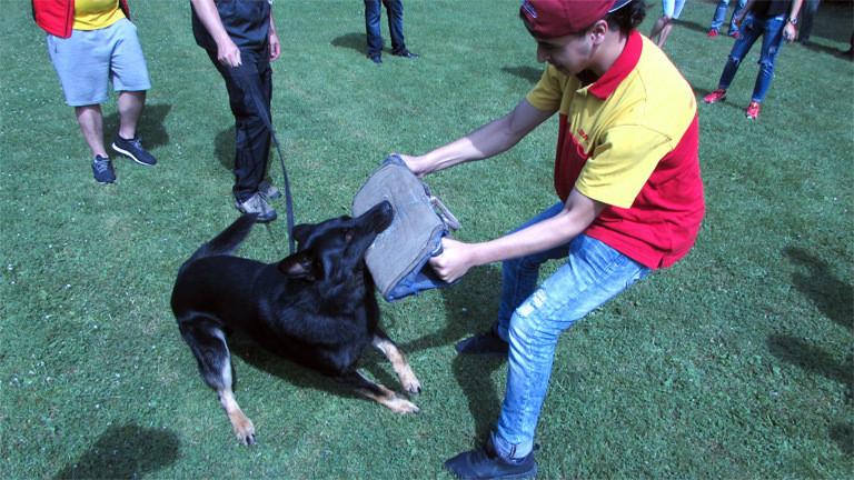 Hundetraining für DHL-Auszubildende