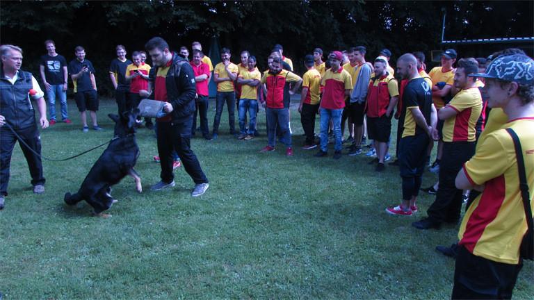 Ein Mann trainiert mit einem Hund während ein Trainer daneben steht. Außenrum stehen andere DHL-Auszubildende und schauen zu.