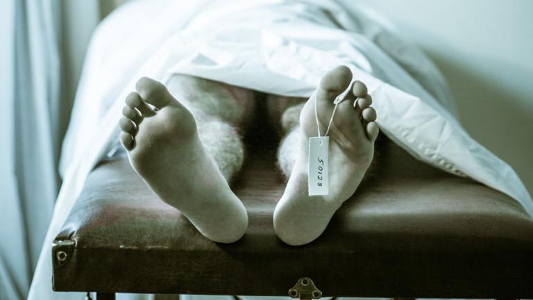 Leichen bewegen sich noch monatelang
