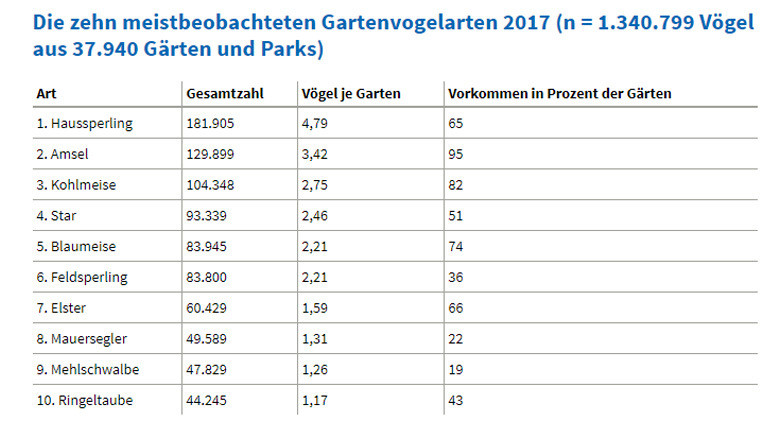 Top Ten der Gartenvögel 2017