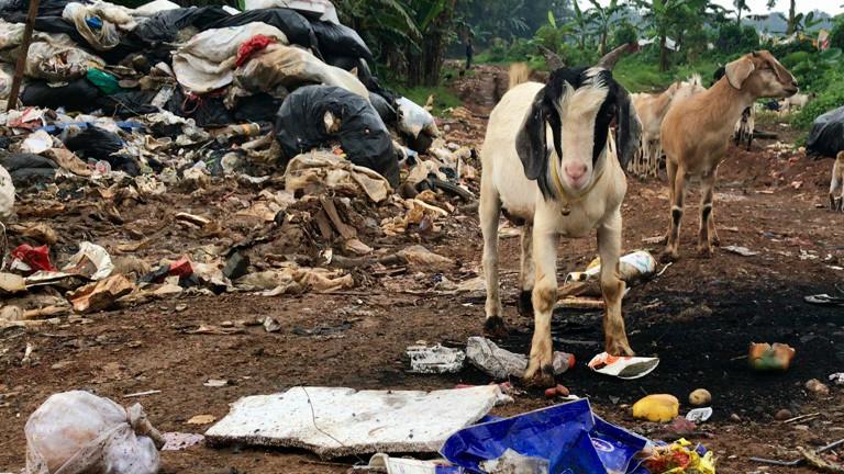 Müll auf Bali