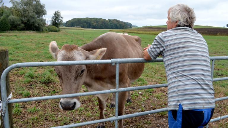 Bauer Andreas Huber mit einer seiner Kühe.