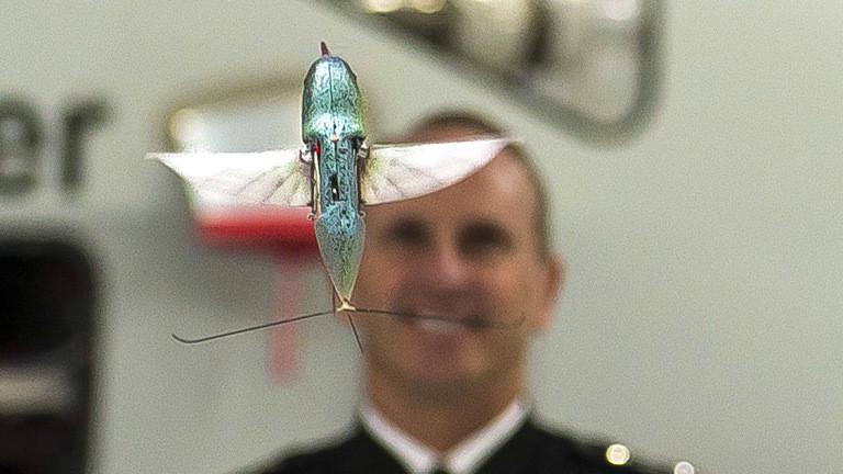 Überwachungsdrohne, die aussieht wie ein Kolibri.