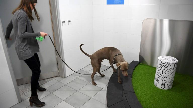 """Eine von zwei """"Pet Relief Area"""" am Flughafen in Helsinki."""