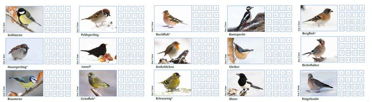 Die 15 häufigsten Vogelarten.