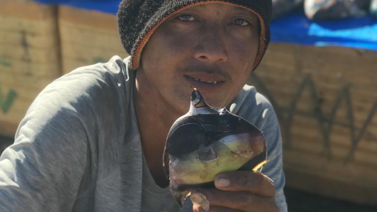 Ein Fischer zeigt einen Fisch, der mit Zyanid gefangen wurde.
