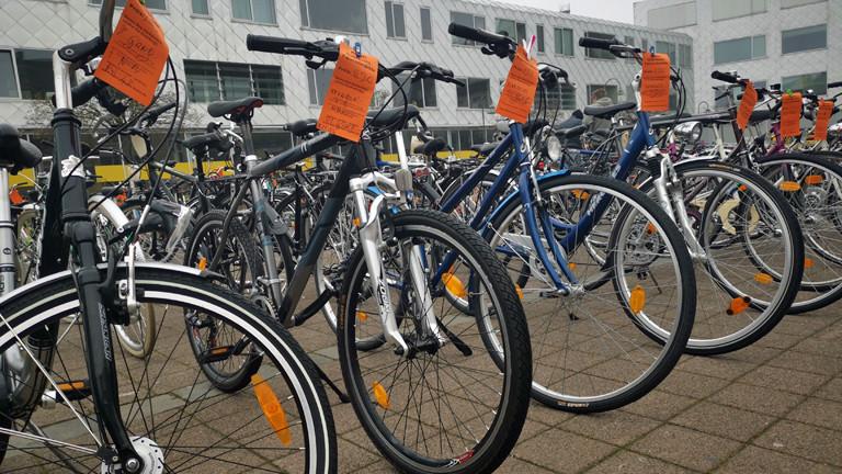 Fahrräder auf dem Kölner Gebrauchtfahrradmarkt.