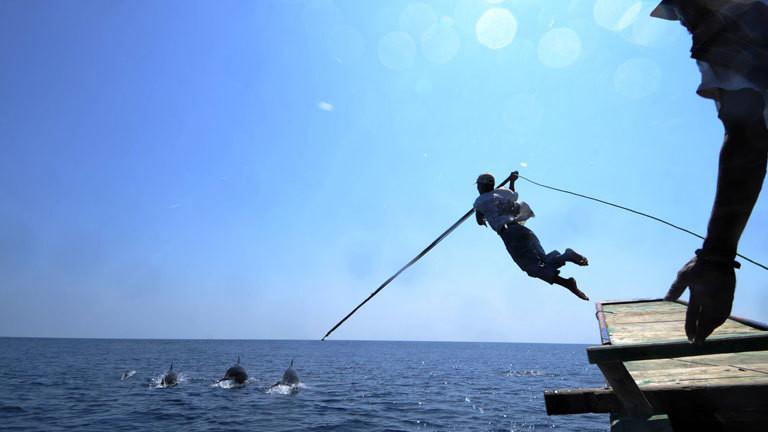Ein Mann jagt Delefine mit einem Haken.