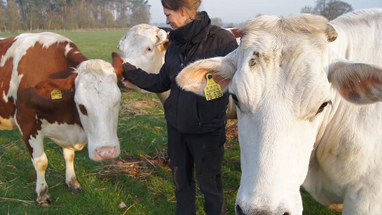 Anna Butz ist Veganerin. Und züchtet Rinder für den Schlachter. Astrid Wolf | Deutschlandfunk Nova