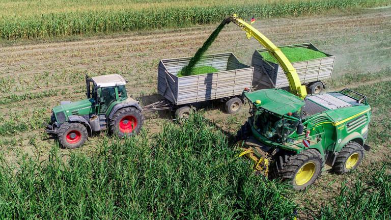 Ein Traktor und ein Feldhäcksler bei der Maisernte
