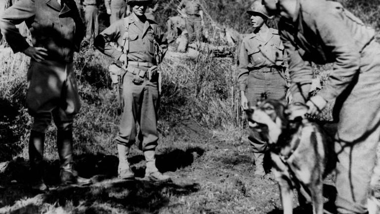 Hund Chips ist mit den Soldaten seiner Einheit in Italien im Oktober 1943.