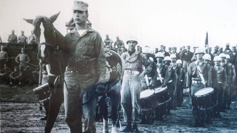 Das US-Militär erklärte Pferd Reckless zum Sergeant.