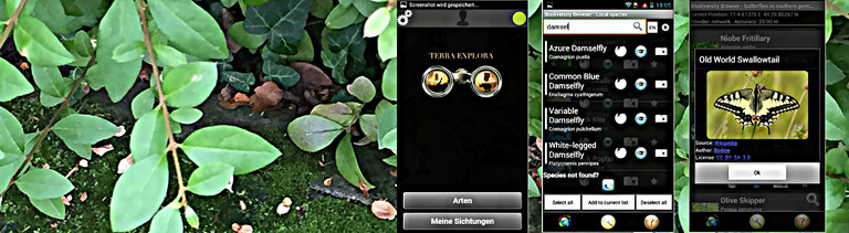 App Anymals and plants