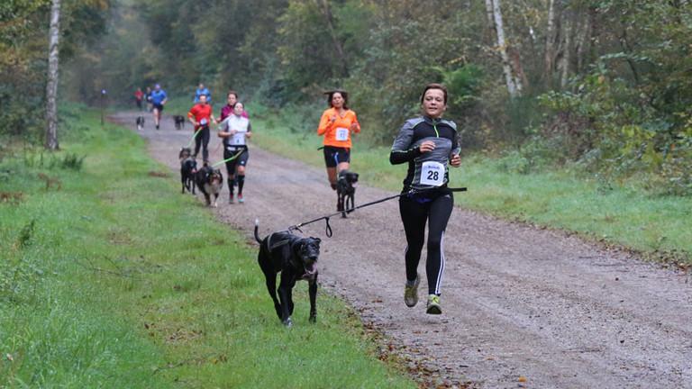 Anita Horn rennt beim Canicross