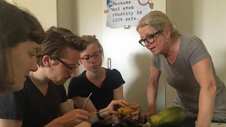 Abtreibung üben an einer Papaya