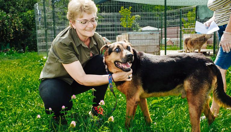 Ana Maria Voicu kümmert sich um einen blinden Hund