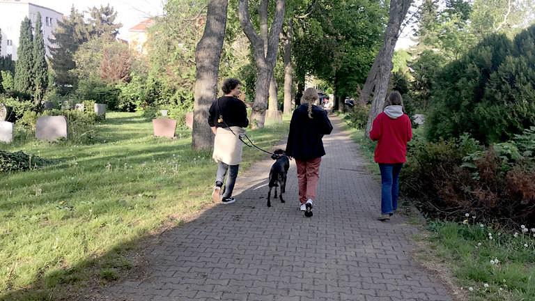Spazieren gehen auf dem Friedhof