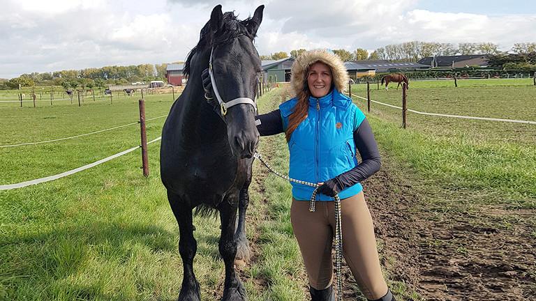 Frau mit einem Pferd auf der Wiese.