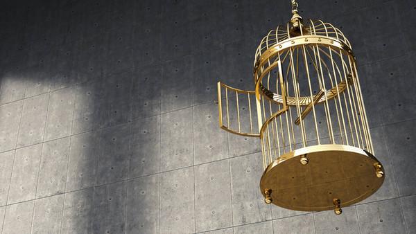 Ein goldener Käfig mit offener Tür