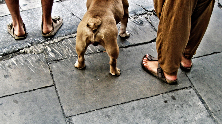 Spaziergänger mit Sandalen von Birkenstock.
