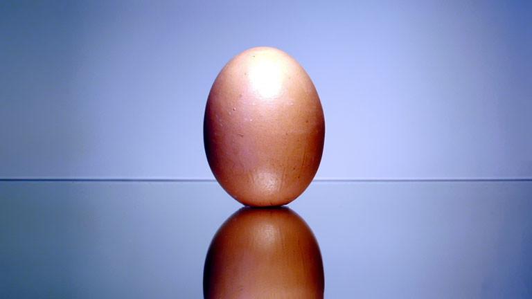Ein Ei, das aufrecht steht.